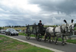 Horsedrawn hearse organised by William Matthew funerals