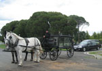 Horsedrawn hearse used for special funeral services