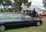 William Matthews hearse